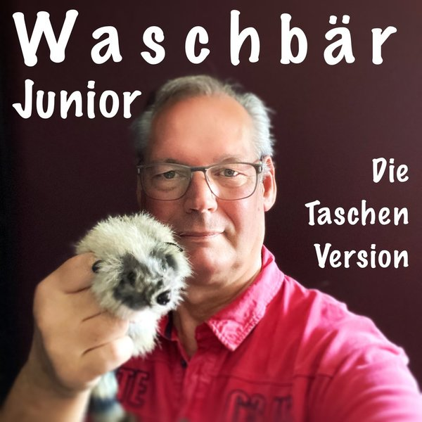 Waschbär Junior (Spring Animal)